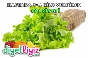 ot diyet